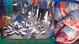 Chittagong Fish Market Bangladesh