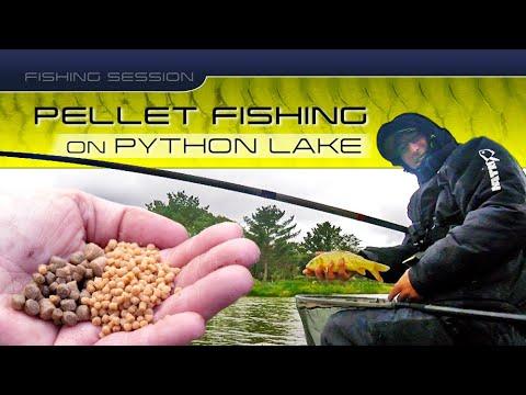 Fishing Session: Pellet Fishing On Python Lake, White Acres Fishery