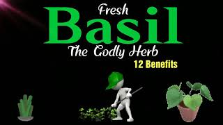 Tribe News Now: Fresh Basil The Godly Herb