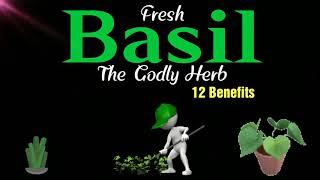 Tribe News Now: Fresh Basil The Godly Herb
