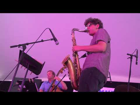 "Western Jazz Quartet, ""And a Cheetah"", LIVE @ Summer Solstice Jazz Festival 2017"
