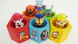 Paw Patrol Bees Beehive Learning Toy Video for Kids to Learn Colors on Baby Rainbow Preschooler Toys