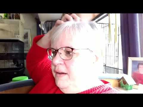 Dec. 13, 2018 Vlog #1663
