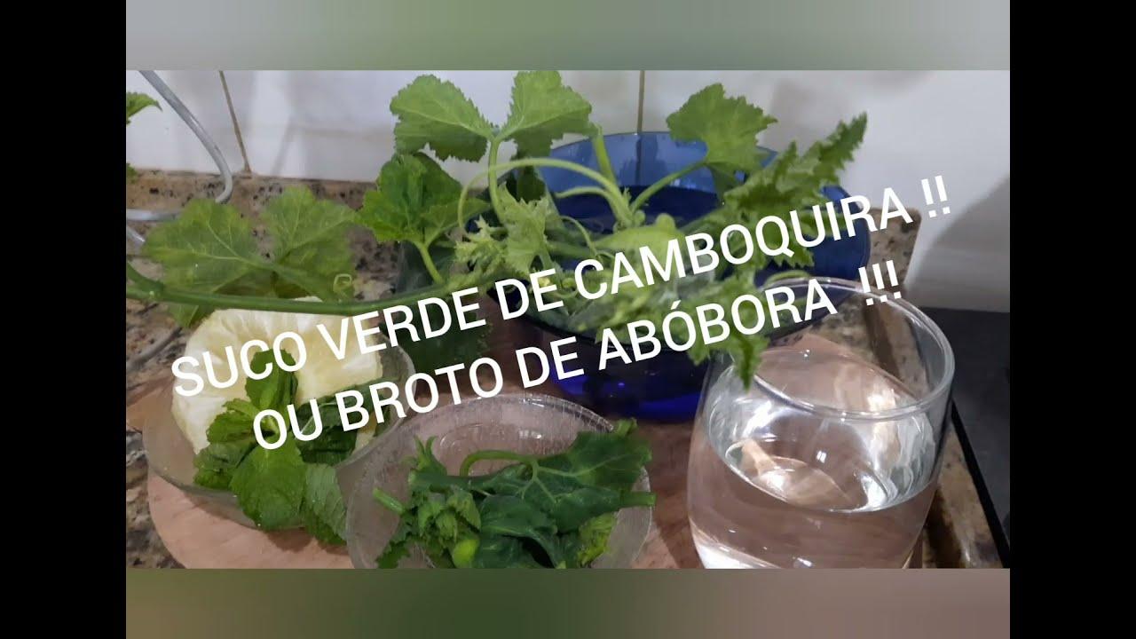 SUCO VERDE DE CAMBUQUIRA OU BROTO DE ABÓBORA 🎃 🎃 🎃  VEJA OS BENEFÍCIOS  !!