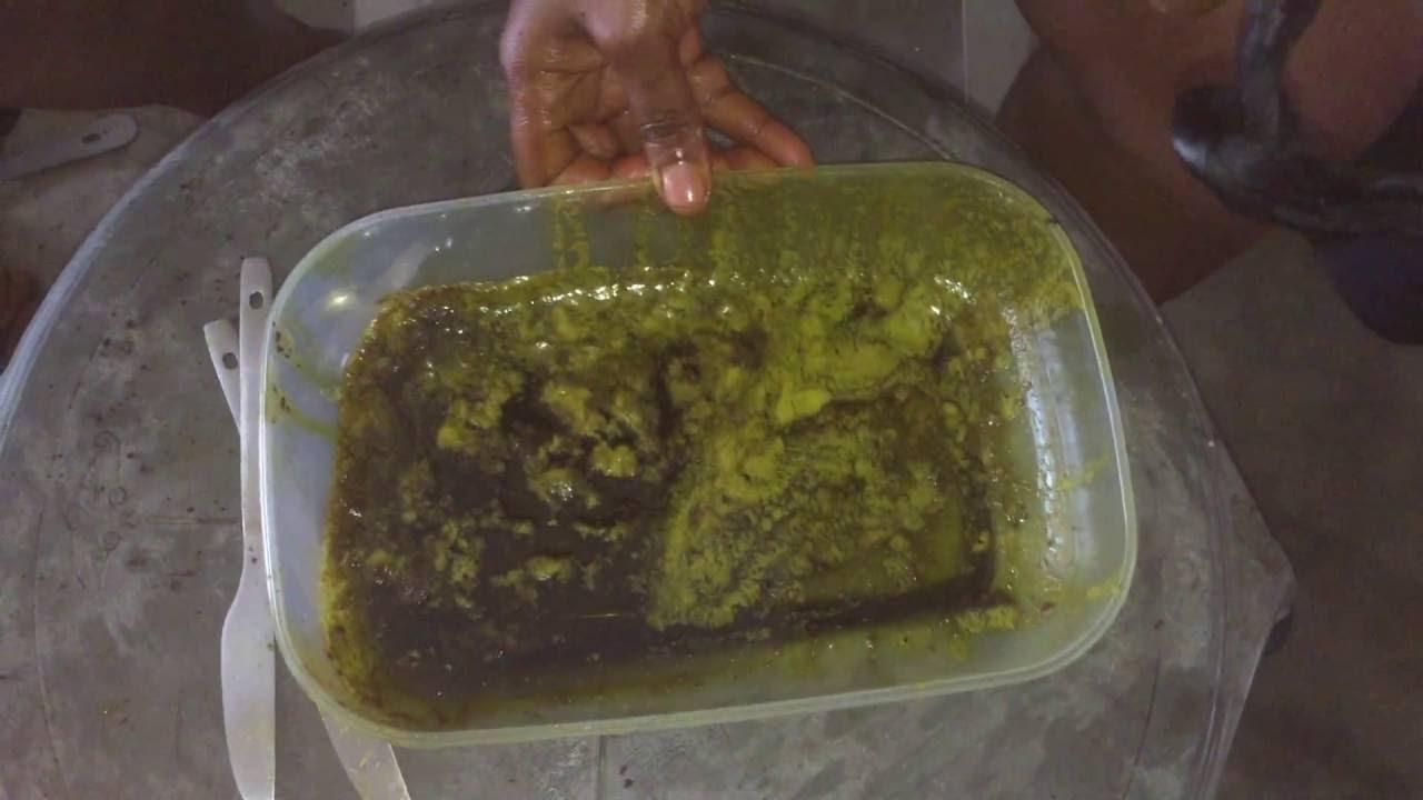How to Make Virgin Avocado Oil at Home