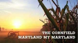 The Bloody Cornfield - Maryland My Maryland