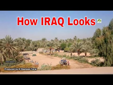 How Iraq Looks Through a Bus Window