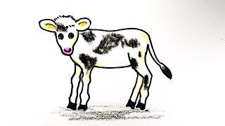 How to draw a calf. 송아지 그리기