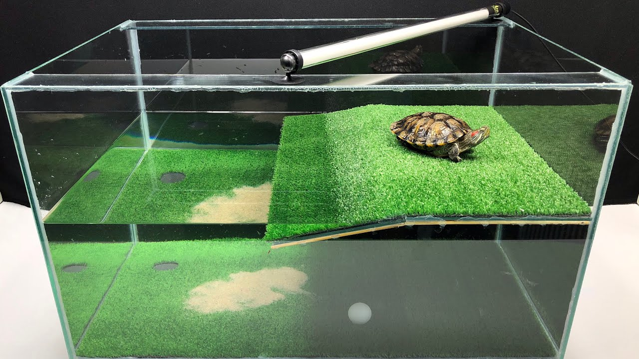 How to make amazing golf house for turtle at home youtube - Make your house a home ...