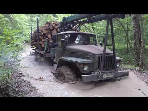 Урал 5557 лесовоз. Вывожу лес после дождей