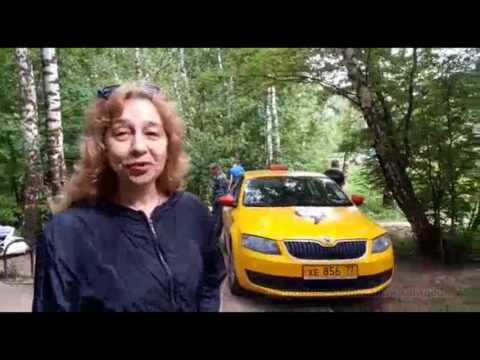 автомобиль яндекс НЕ такси заехал в лесопарковую зону
