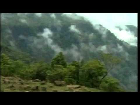 Bheeg Gaya Mera Mann fan video