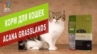 Корм для кошек Acana Grasslands   Обзор корма для кошек Acana Grasslands