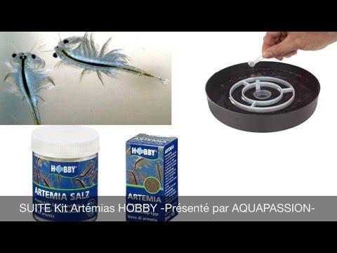 SUITE Kit Artémias HOBBY