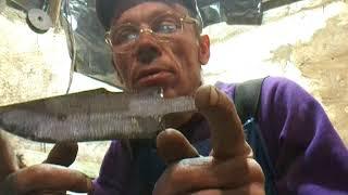 Ковка ножей в домашних условиях: подготовка и процесс (видео)