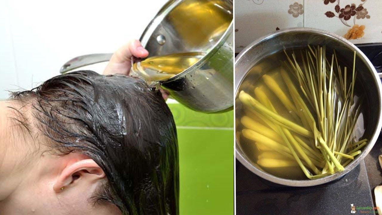 5 cách trị rụng tóc đơn giản hiệu quả tại nhà cả thế giới săn lùng - Trị Rụng Tóc