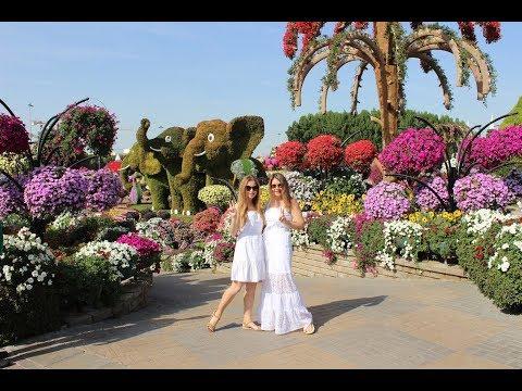 Парк цветов в Дубае удивляет прямо со входа! Dubai miracle garden 2019