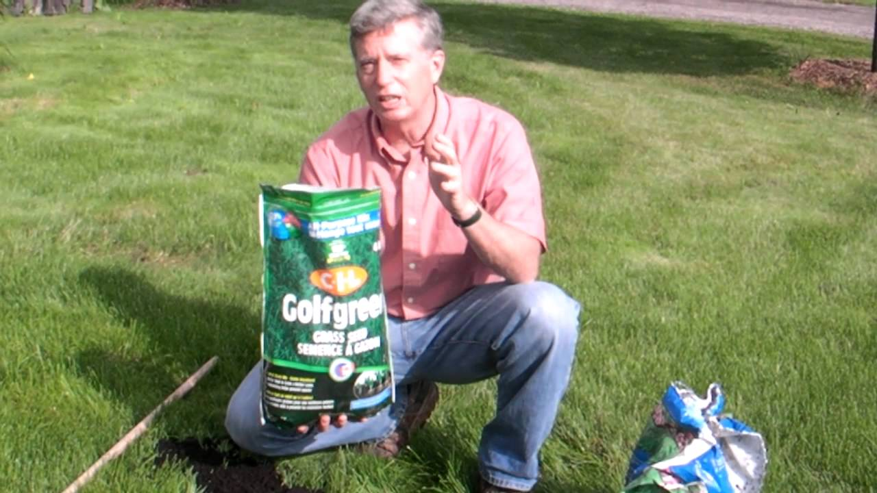How To Repair Bare Spots In The Lawn Youtube