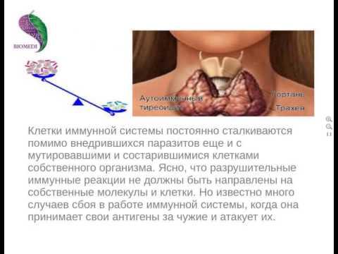 Аутоиммунные заболевания — Википедия