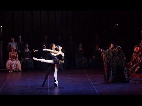 Tamara Rojo / Isaac Hernandez - Black Swan pas de deux - World Ballet Stars Gala New York