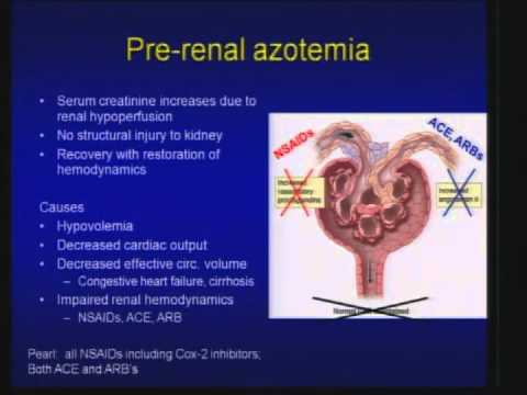 01 Acute Kidney Injury