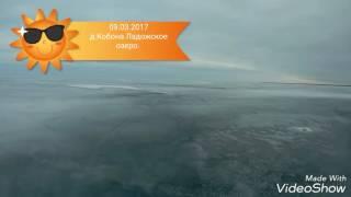 Рыбалка на Ладожском озере. д.Кобона. Окунь на мормышку.