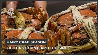 Fighting China's counterfeit crab problem