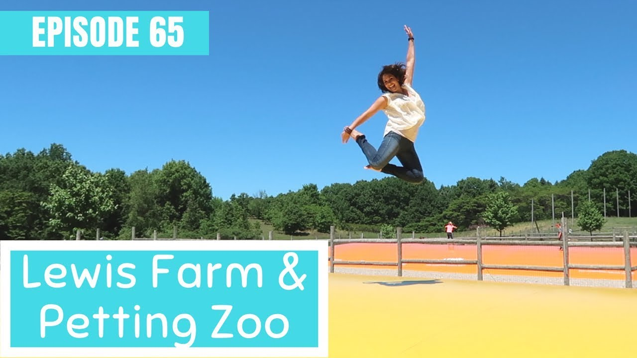 Lewis Farm Petting Zoo And Jeffrey The Camel Michigan Travel Video Youtube