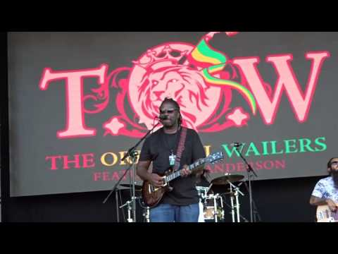 The Original Wailers ft Al Anderson ...Could You Be Loved