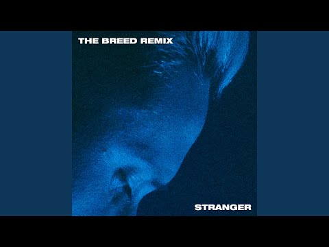 Stranger (The Breed Remix)