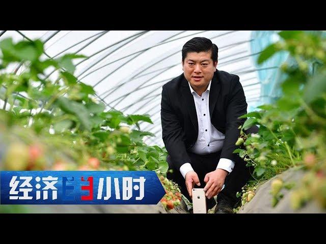 《经济半小时》 20190521 农民网红的直播生活  CCTV财经