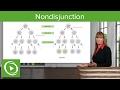 Nondisjunction: Chromosomal Disorders & Aneuploidies – Medical Genetics | Lecturio