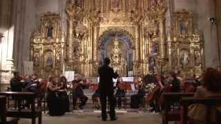 Antonín Dvorak. Serenata para cuerdas en Mi Mayor, Op. 22. Moderato. OCCM.