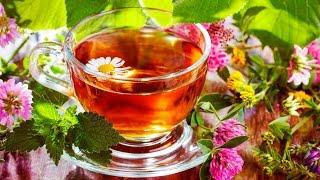 видео Полезные чаи для здоровья