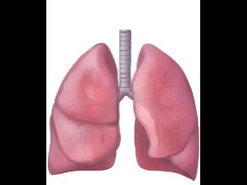 BREATH SOUNDS- STRIDOR