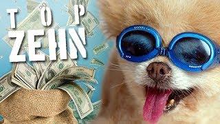 10 komische Wege reich zu werden!