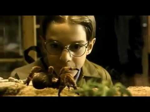 Trailer do filme Maldita Aranha Gigante!