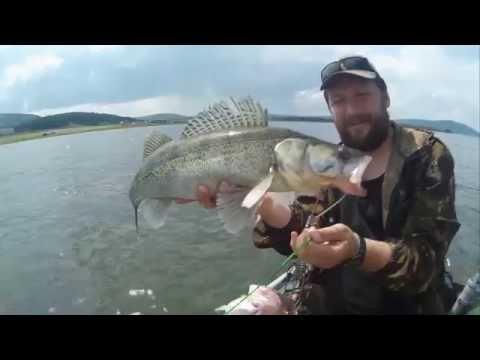 рыбалка на белой в башкирии на судака