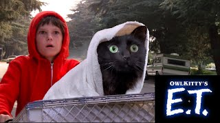 When you take your cat to the vet (E.T. + my cat OwlKitty)