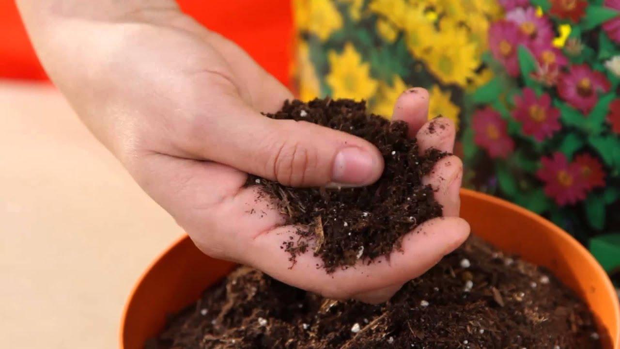 Conoce los tipos de tierra para tu jard n youtube for Tipos de jardines