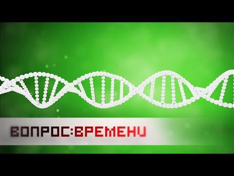 Вопрос времени. ДНК - Досье На Клетку - Cмотреть видео онлайн с youtube, скачать бесплатно с ютуба