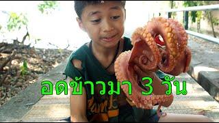 คนจนกิน-หมึกยักษ์ทาโกะ-ครั้งแรกในชีวิต