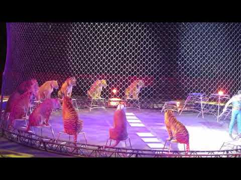 New Santali love video HD song 2018-03-01