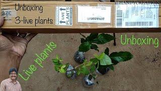 ఆన్లైన్ లో మొక్కలు తెపించుకోవచ్చు / live plants unboxing/మొక్కలు అన్బాక్సింగ్ /buy plants online