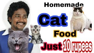 Homemade Cat Food | Tamil | Vinothjustice