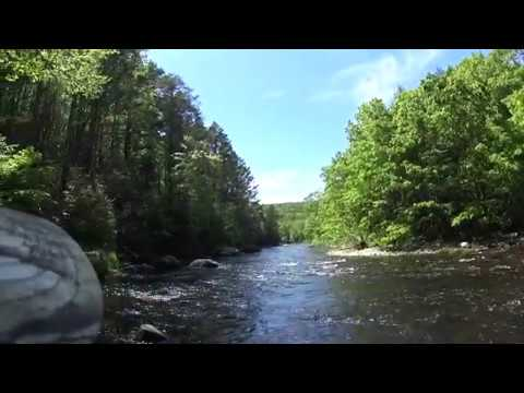 Fishing The Salmon River/Colchester CT.  5/25/2019