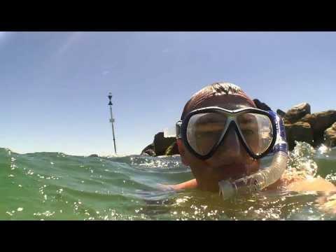 Snorkeling Semaphore Adelaide - TEASER