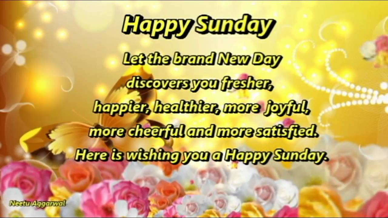 Happy sunday wishesgreetingse cardwallpapers whatsapp video happy sunday wishesgreetingse cardwallpapers whatsapp video youtube kristyandbryce Images