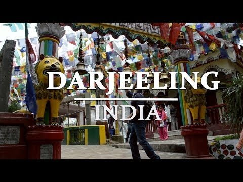 Travel Guide to India (Part 4): Darjeeling