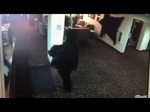 News of the North reports ... Travelodge Hotel robbed in Juneau